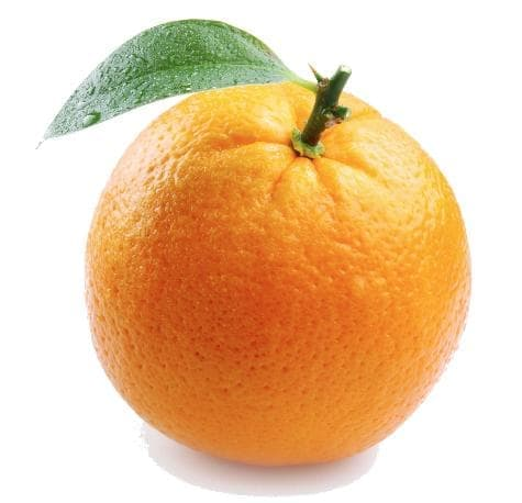 Апельсин (orange, Citrus sinensis)