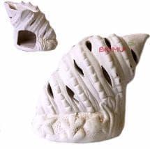Фарфоровая аромалампа Ракушка