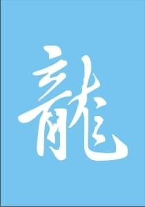 """Самоклеющийся трафарет-иероглиф для менди """"Dragon"""" от BioMui"""